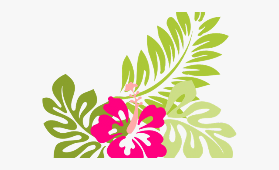 Hibiscus clipart garland. Hawaiian flowers free