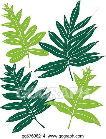 Vector illustration hawaiian ferns. Fern clipart lauae