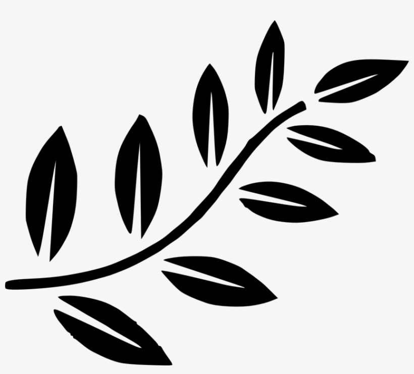 Fern clipart olive. Shidagakure branch black and