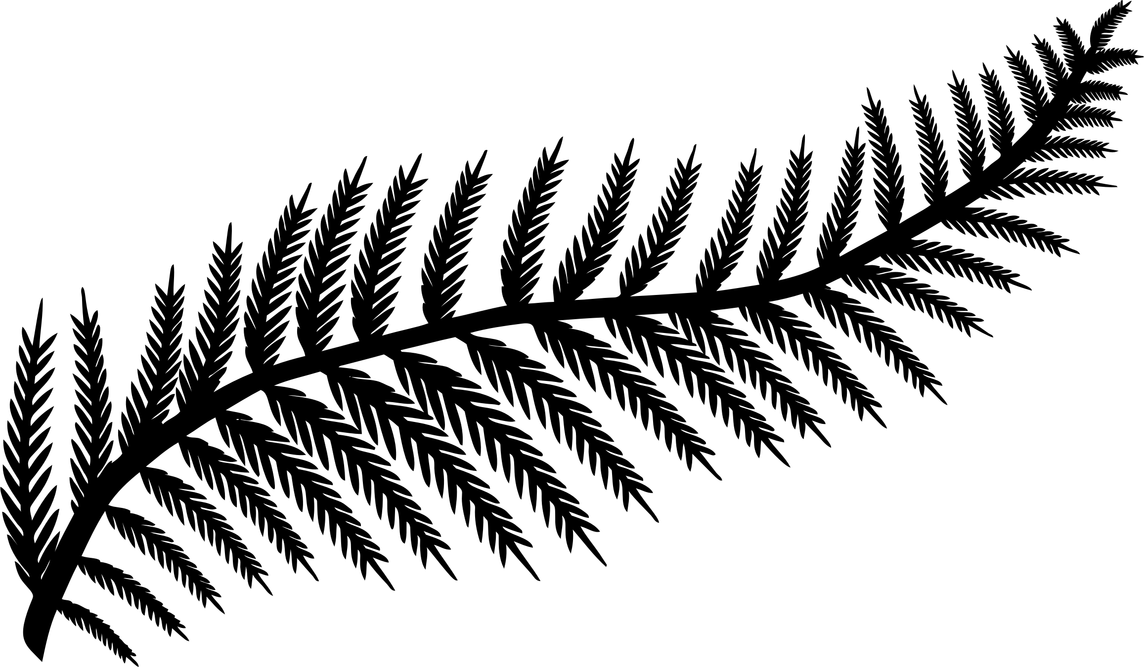 Leaf silhouette by karen. Fern clipart outline