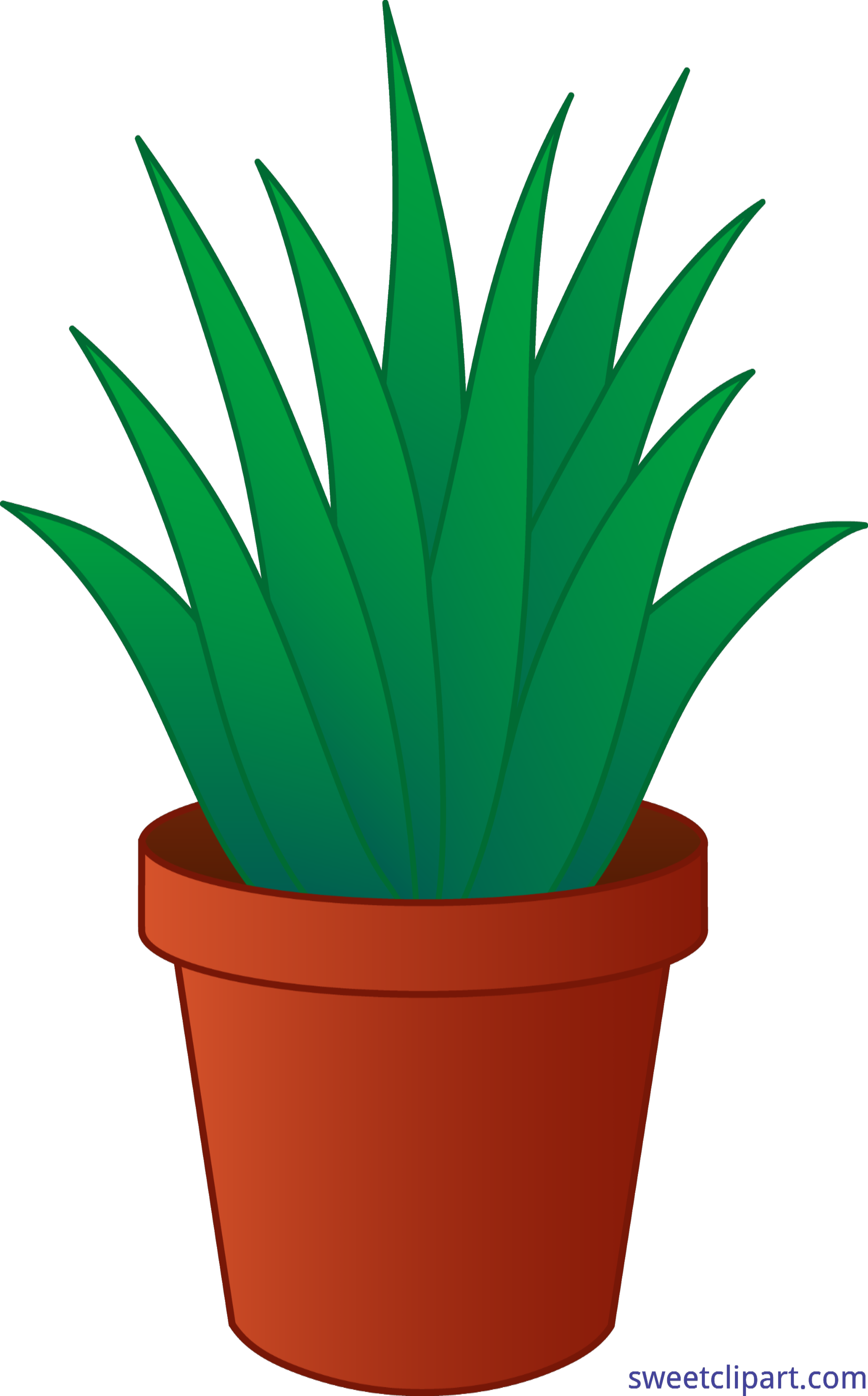 Pot drawing at getdrawings. Poinsettia clipart potted plant