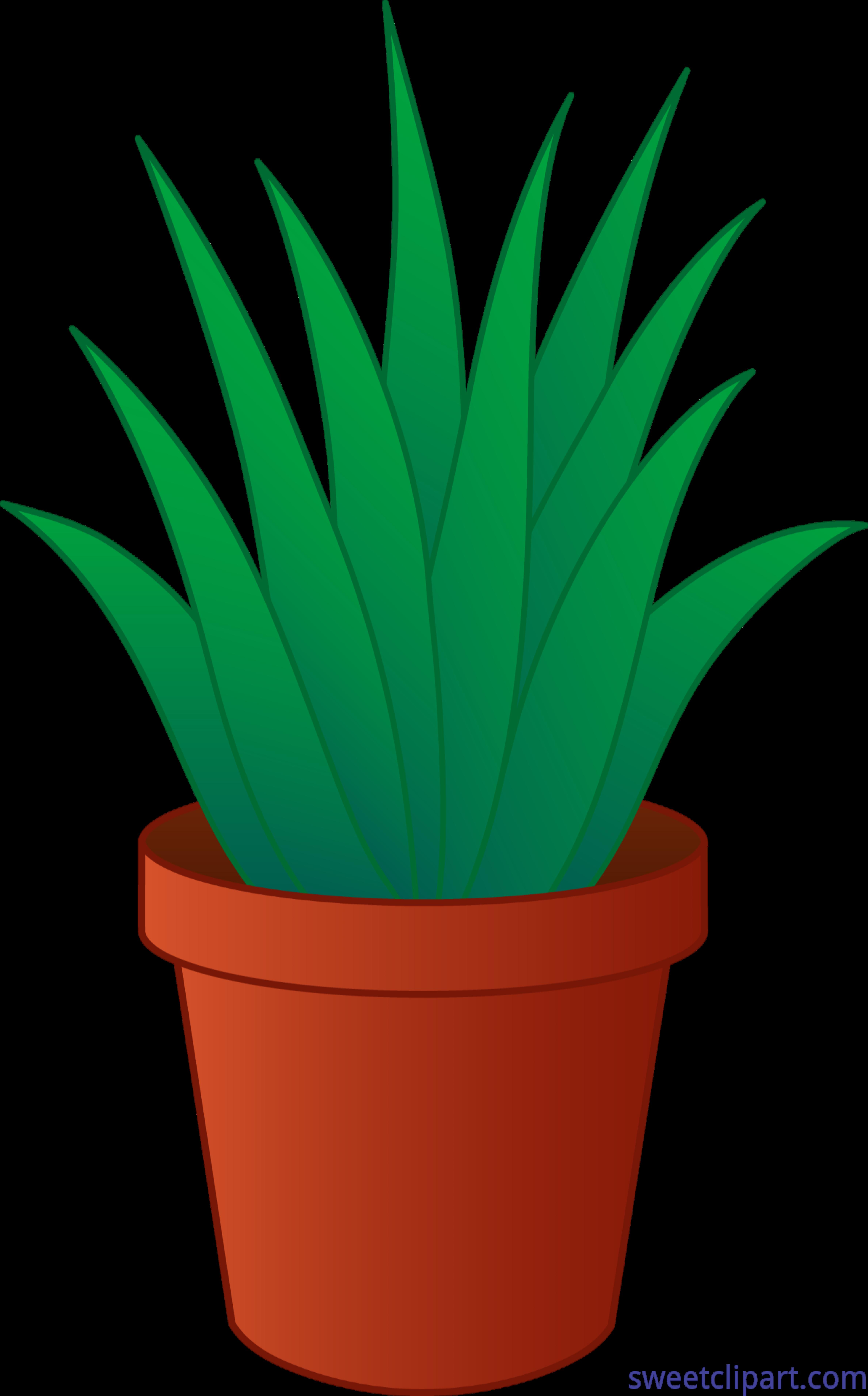 Marijuana clipart tropical plant. Pot drawing at getdrawings