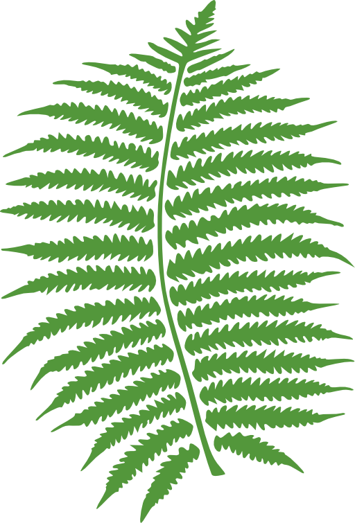 Fern clipart prehistoric plant. I royalty free public
