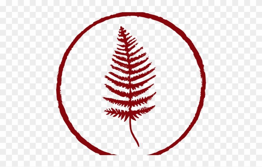 Illustration png download . Fern clipart red fern