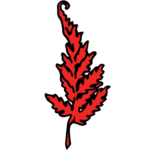 Fern clipart red fern. Special orders the vegan