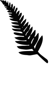 Nz silver free images. Fern clipart sliver