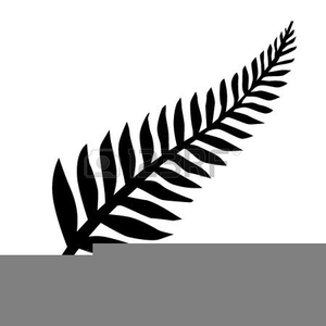 Fern clipart sliver. Nz silver free images