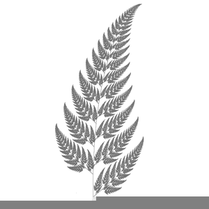 Fern clipart sliver. Silver free images at