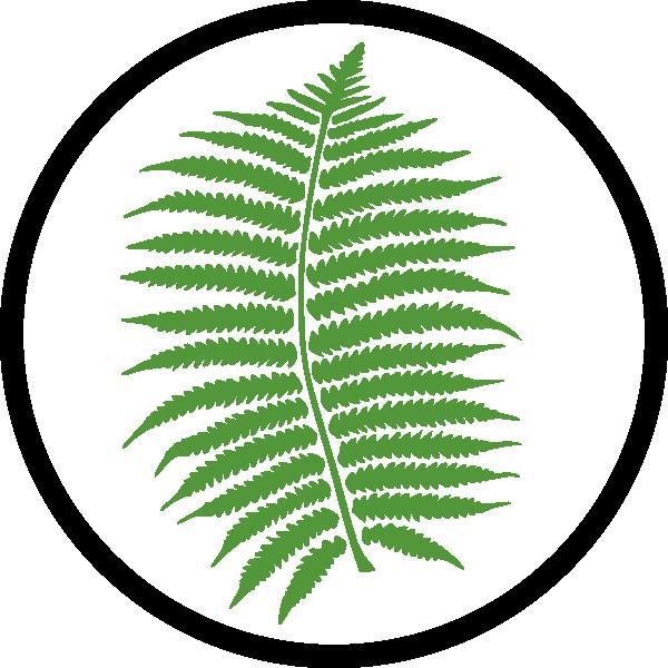Appropriate vegetation clip art. Fern clipart terrestrial plant