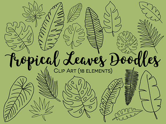Fern clipart tropical fern. Leaves hand drawn doodle