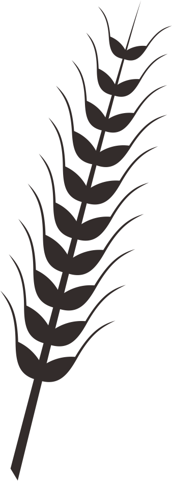 Fern clipart wheat plant. Free on dumielauxepices net