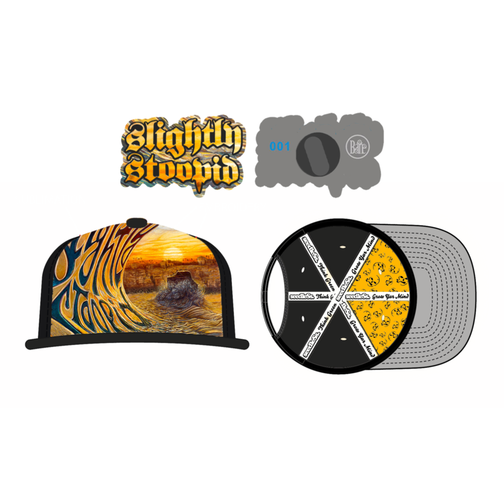 Festival clipart concert fan. Slightly stoopid sslphatpinxpng