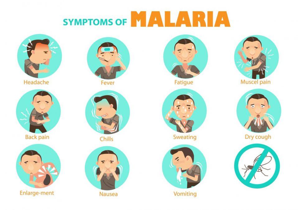 What are the symptoms. Fever clipart malaria symptom