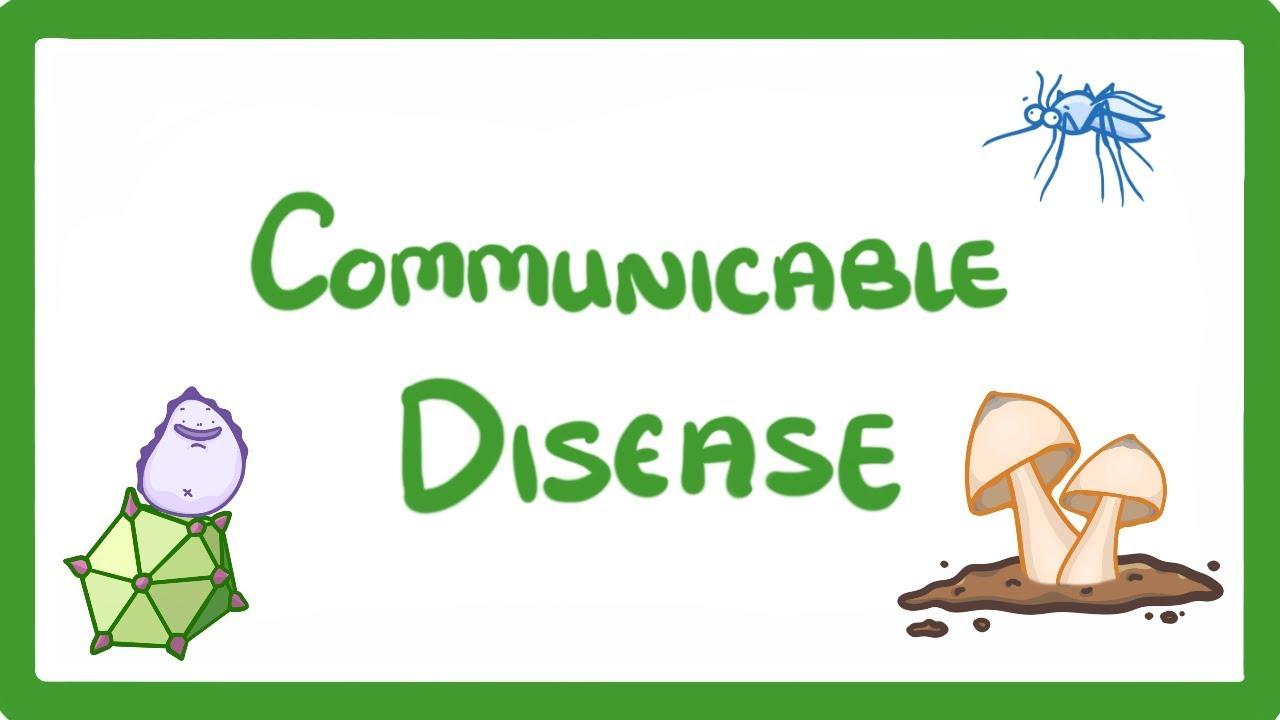 Gcse biology . Fever clipart non communicable disease