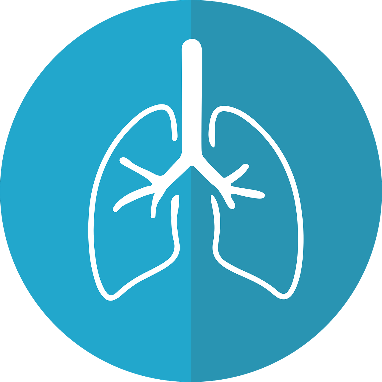 Salient points to remember. Lungs clipart pneumonia