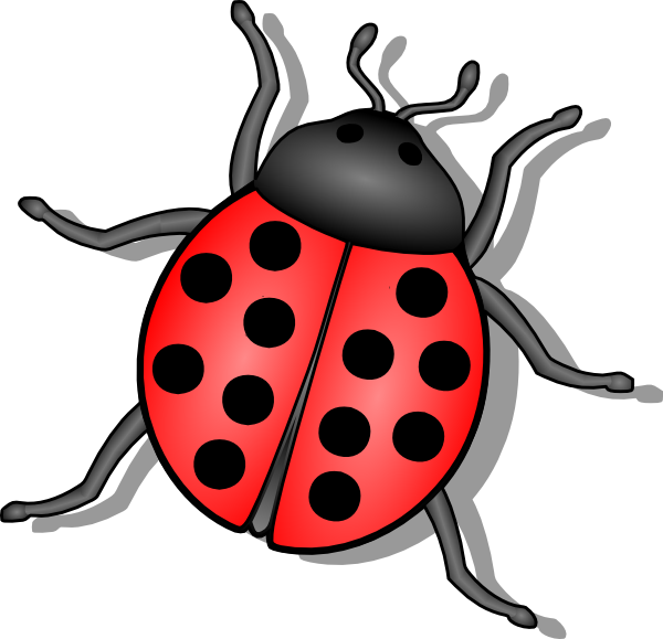 Insects clipart water. Lady bug clip art