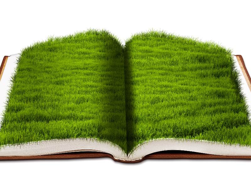 Free png images for photoshop. Open book with green