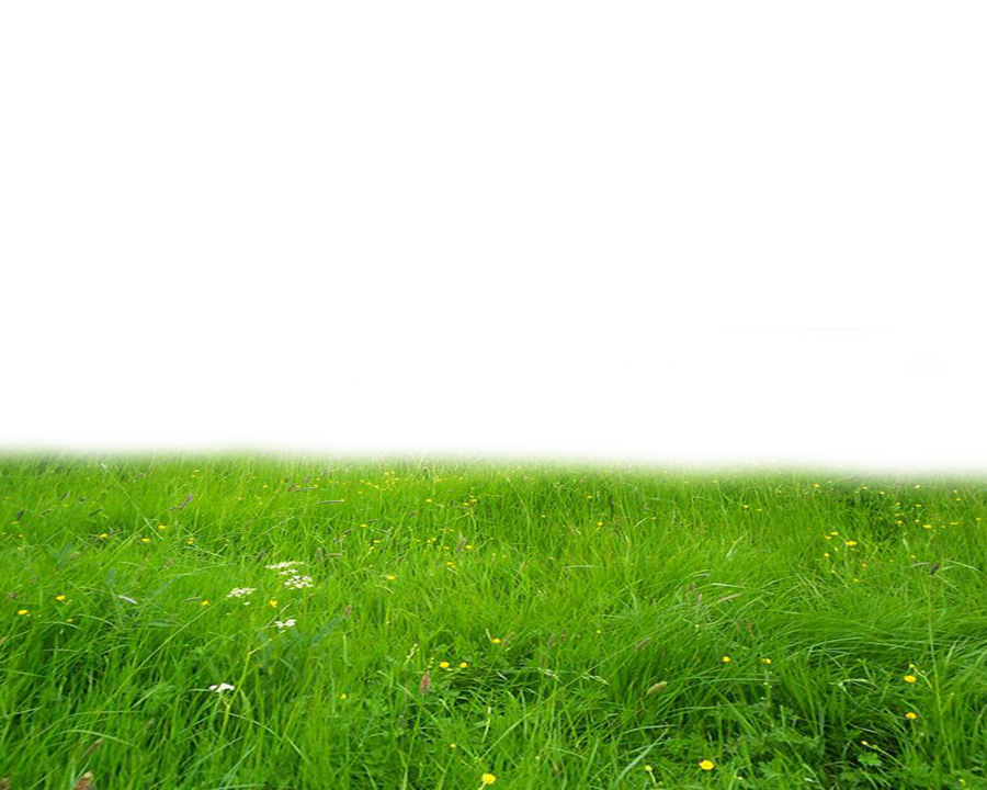 Png images free download. Land clipart carpet grass