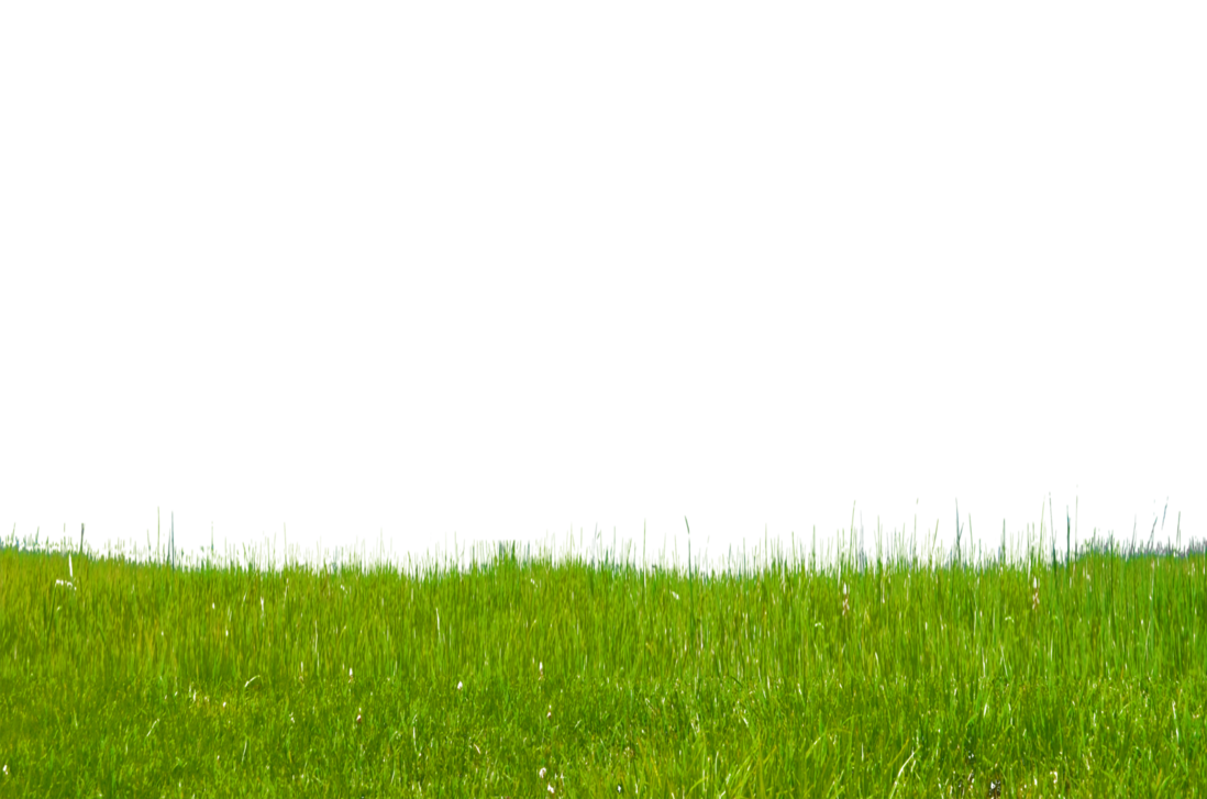 Grass on stock photo. Pathway clipart hillside