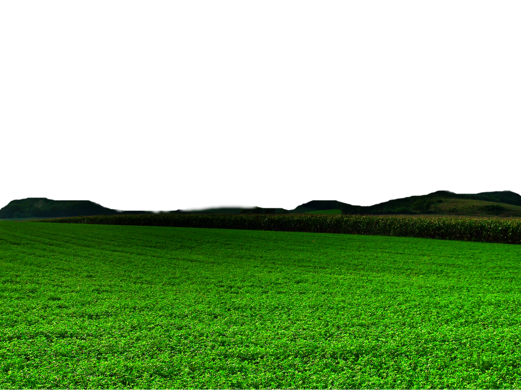 Green nature png transprent. Land clipart fence field