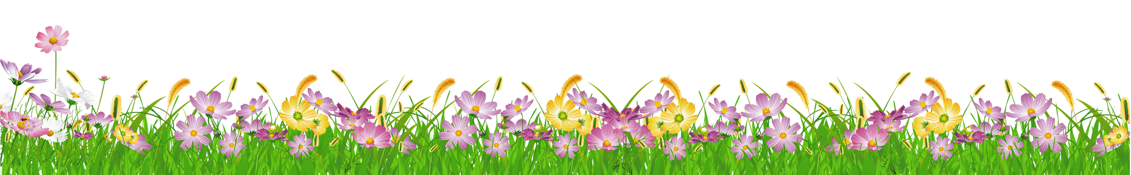 Free cliparts download clip. Clipart grass flower