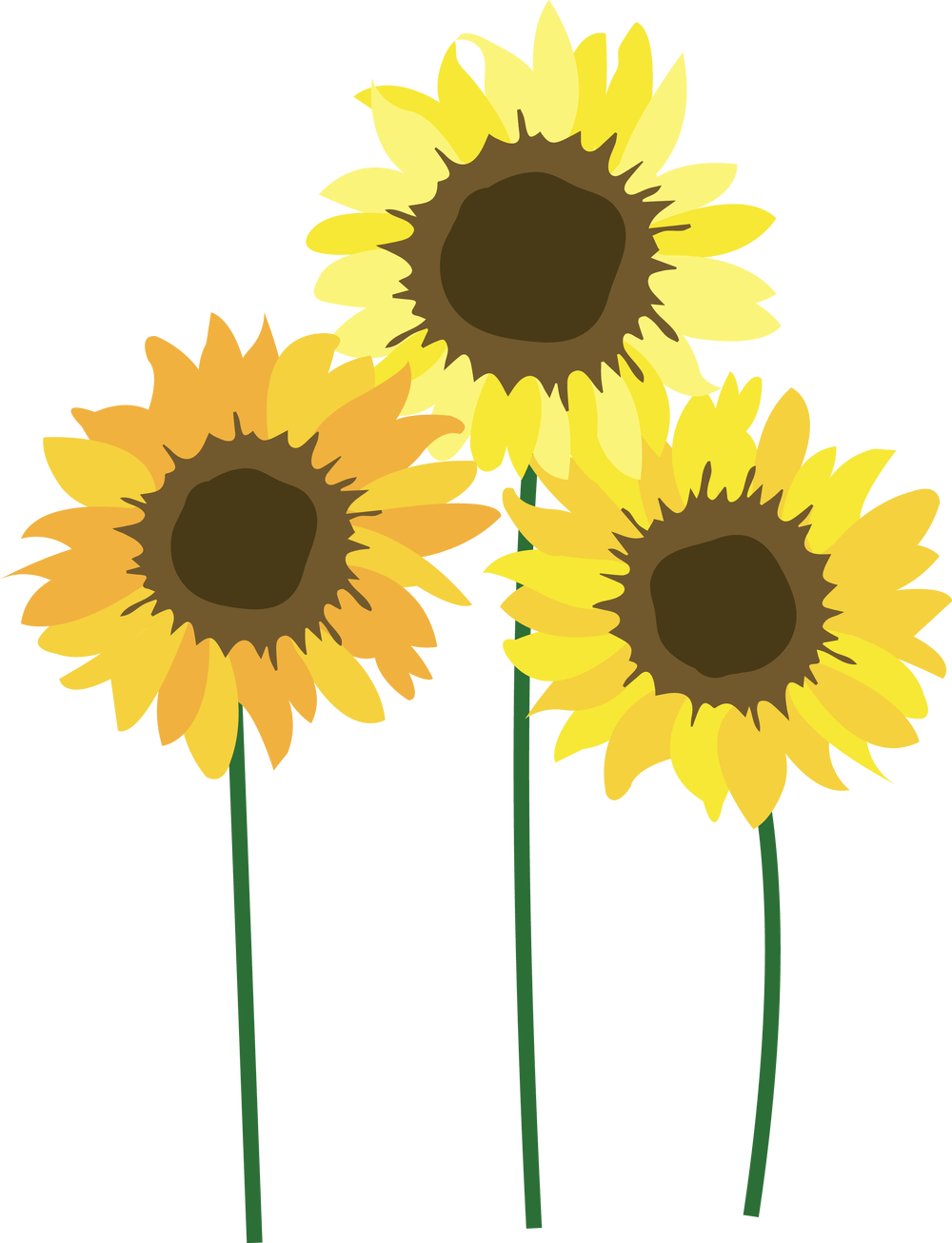 Sunflower festival . Field clipart sunflowers