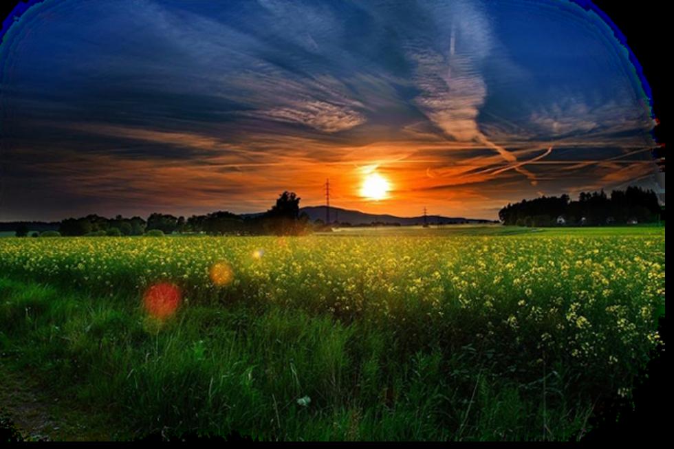 Pin by terezia matola. Field clipart sunrise