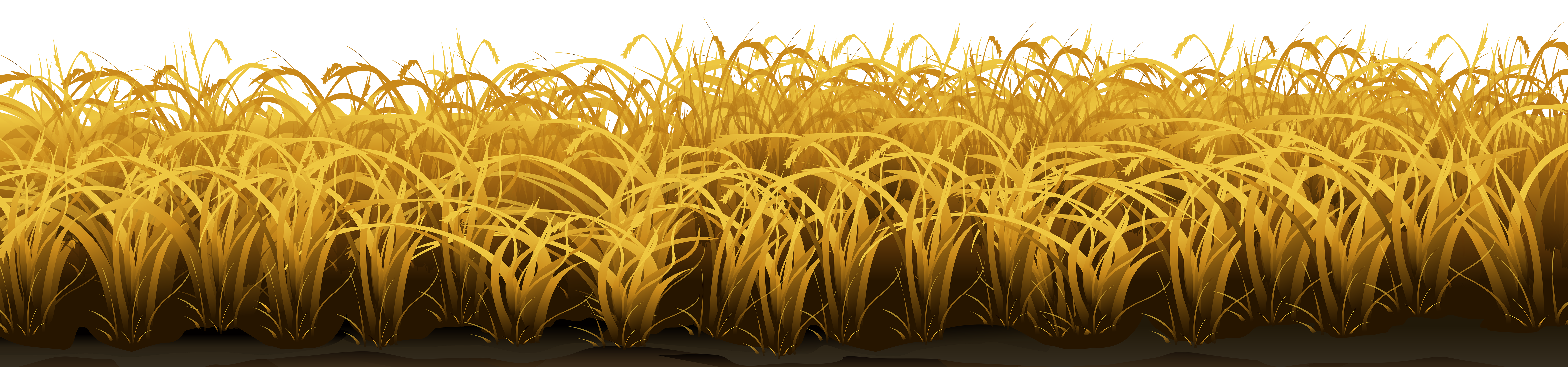Wheat clipart cute. Field wallpapers photo category