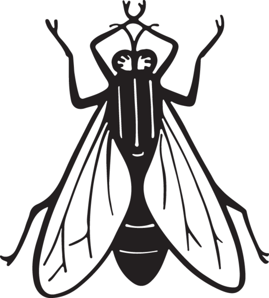 ra insect fly. Insects clipart line art