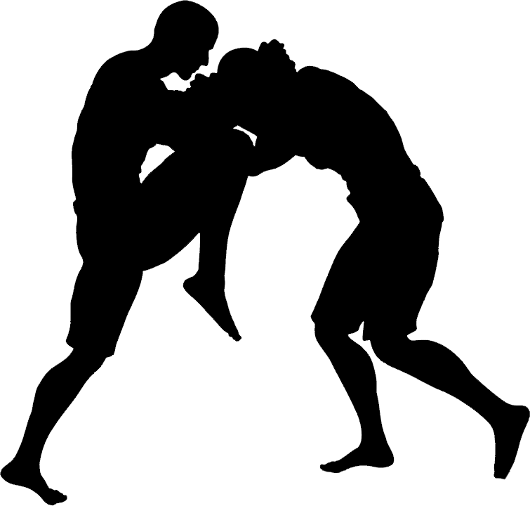 Mixed martial arts silhouette. Wrestlers clipart transparent background
