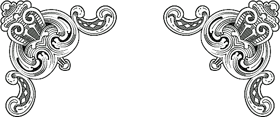 Black and white patten. Filigree border png