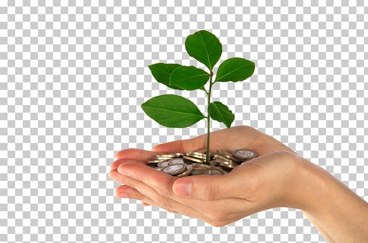 Account finance investment pension. Financial clipart savings