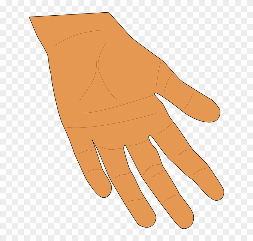 Palm fingers human skin. Finger clipart brown hand