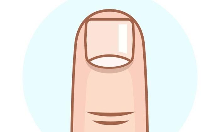 Finger clipart finger nail. Nails station