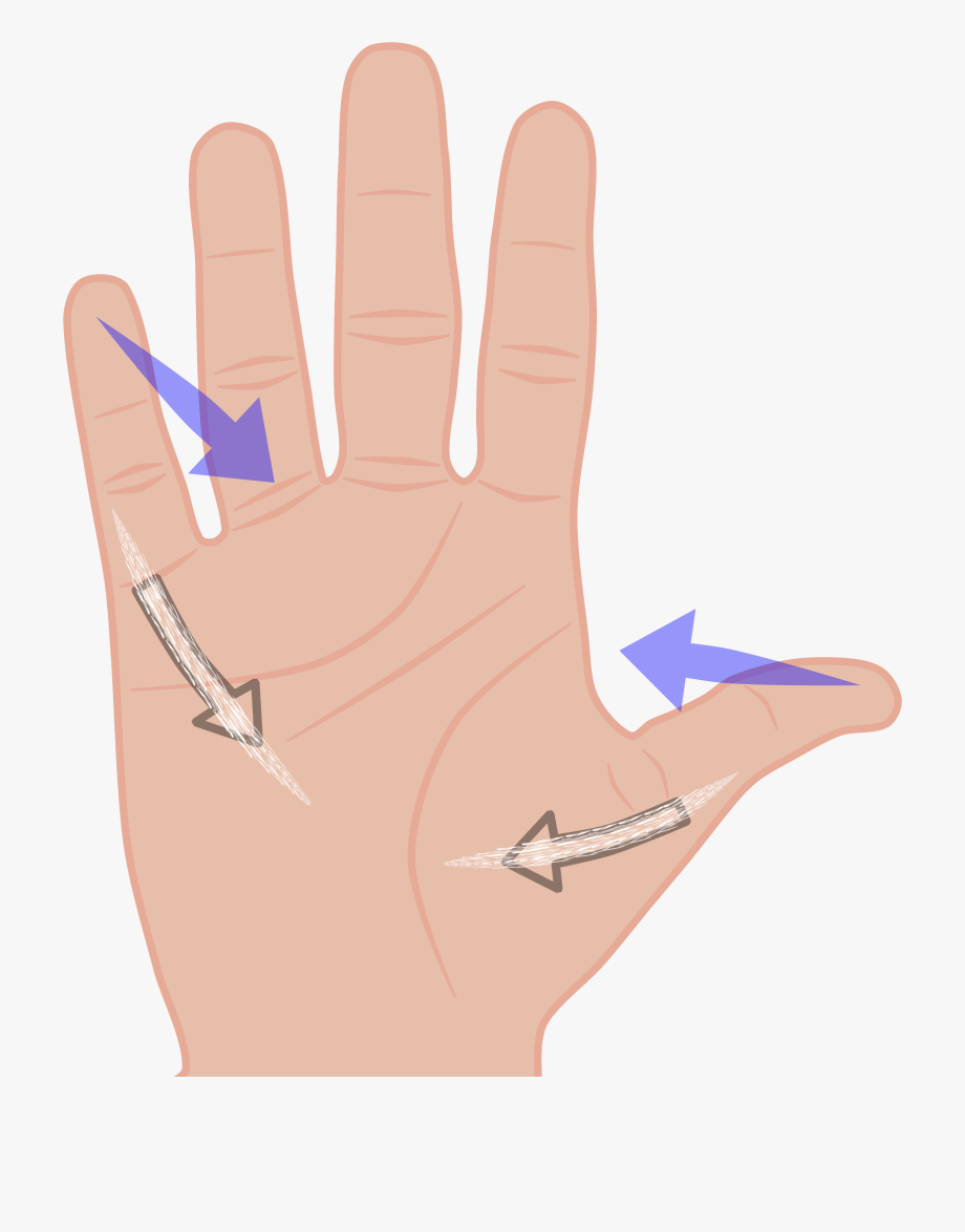 Fingers free cliparts . Finger clipart hand span