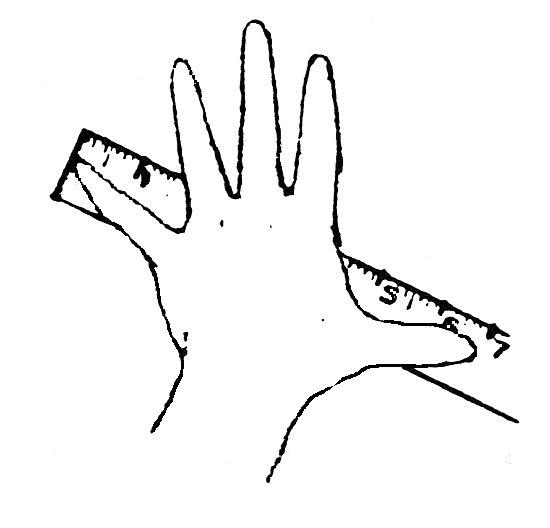 Free gloves handspan download. Finger clipart hand span