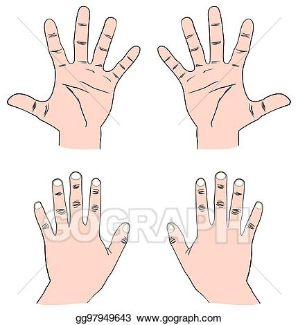 Finger clipart pair hand. Vector illustration of human