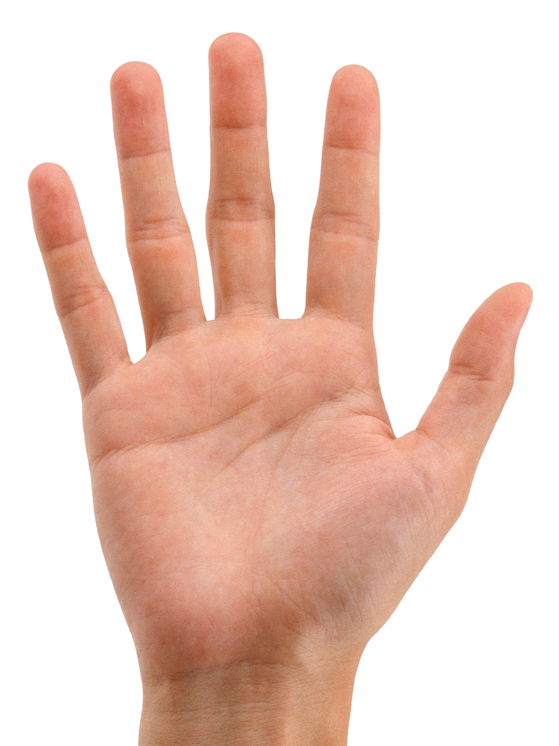 Fingers clipart six finger. Hands png free images
