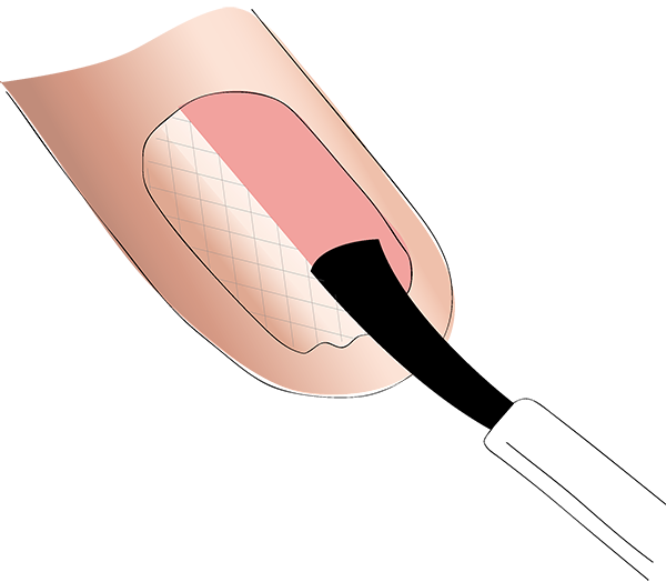 Skin clipart clean fingernail. A good resolution stop