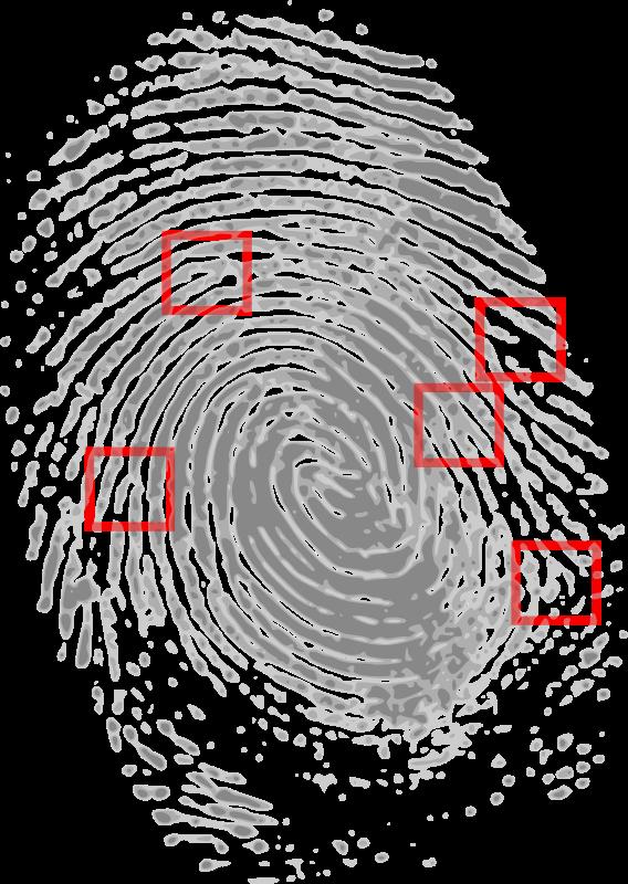Fingerprint medium image png. Fingers clipart thumbmark