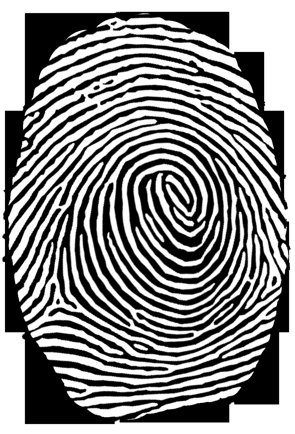 Authentication clip art transprent. Fingerprint clipart real