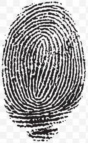Fingerprint clipart artistic. Images png free download
