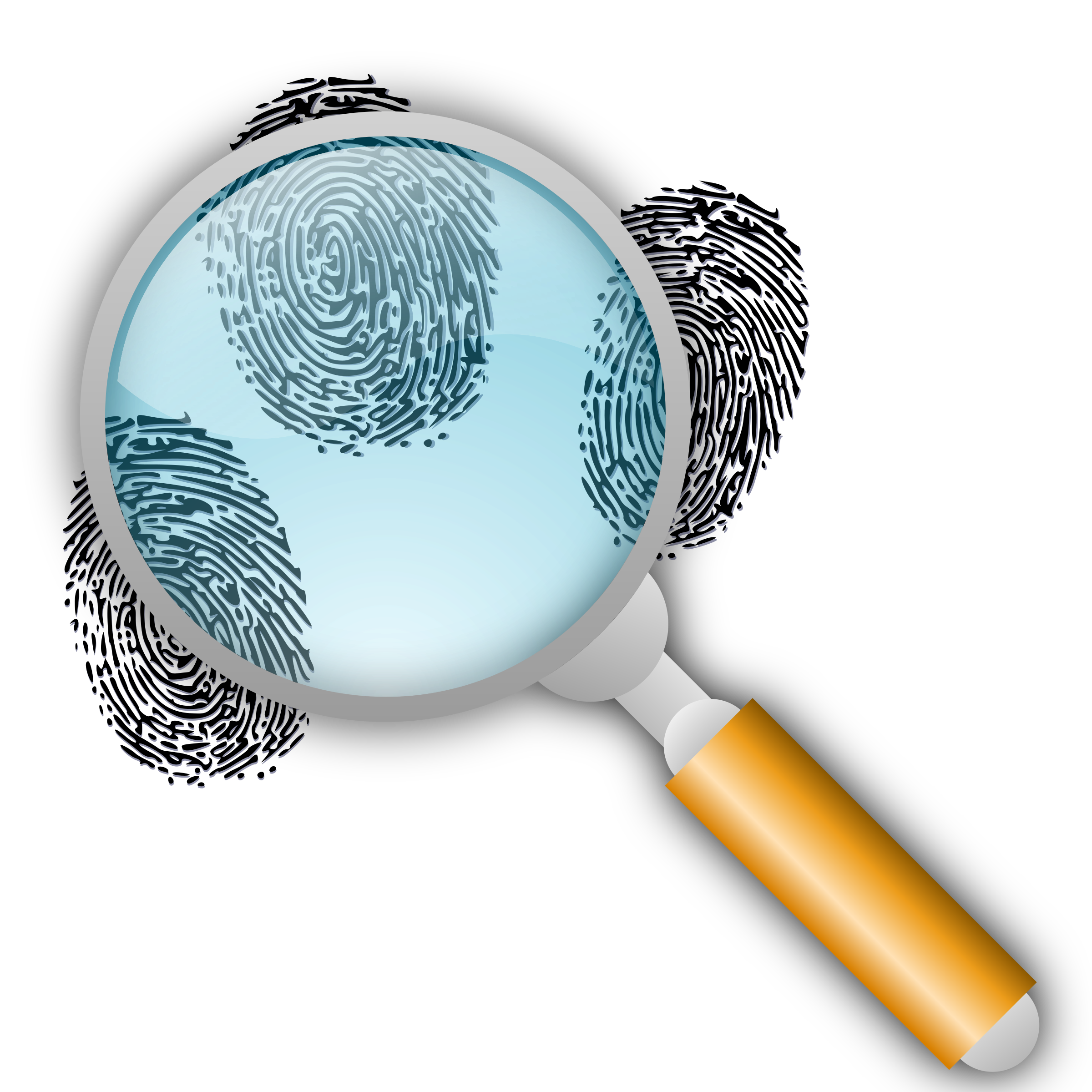 Search with slight magnification. Fingerprint clipart big