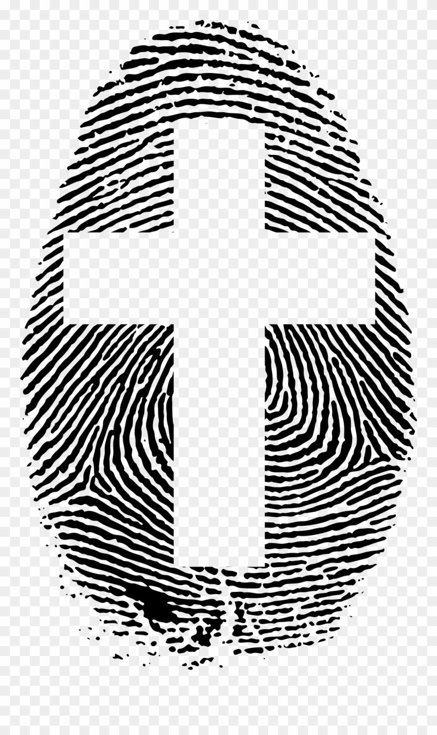 Fingerprint clipart big. Image fibonacci pinclipart