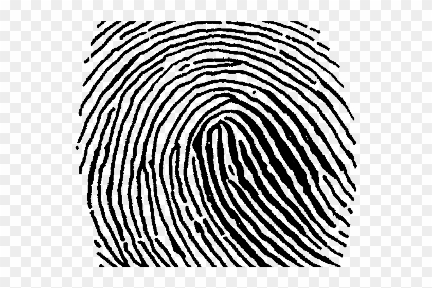 Fingerprint clipart big. Large transparent png clip