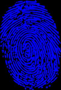 Fingerprint clipart blue. Png svg clip art