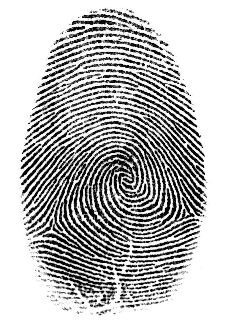 Fingerprint clipart dna fingerprint. Golden circle spiral line