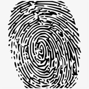 Fingerprint clipart large. Finger printing free