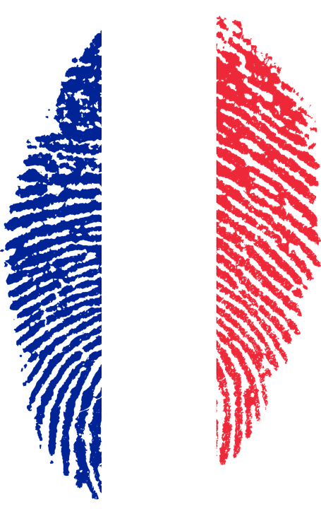 France flag png transparent. Fingerprint clipart red