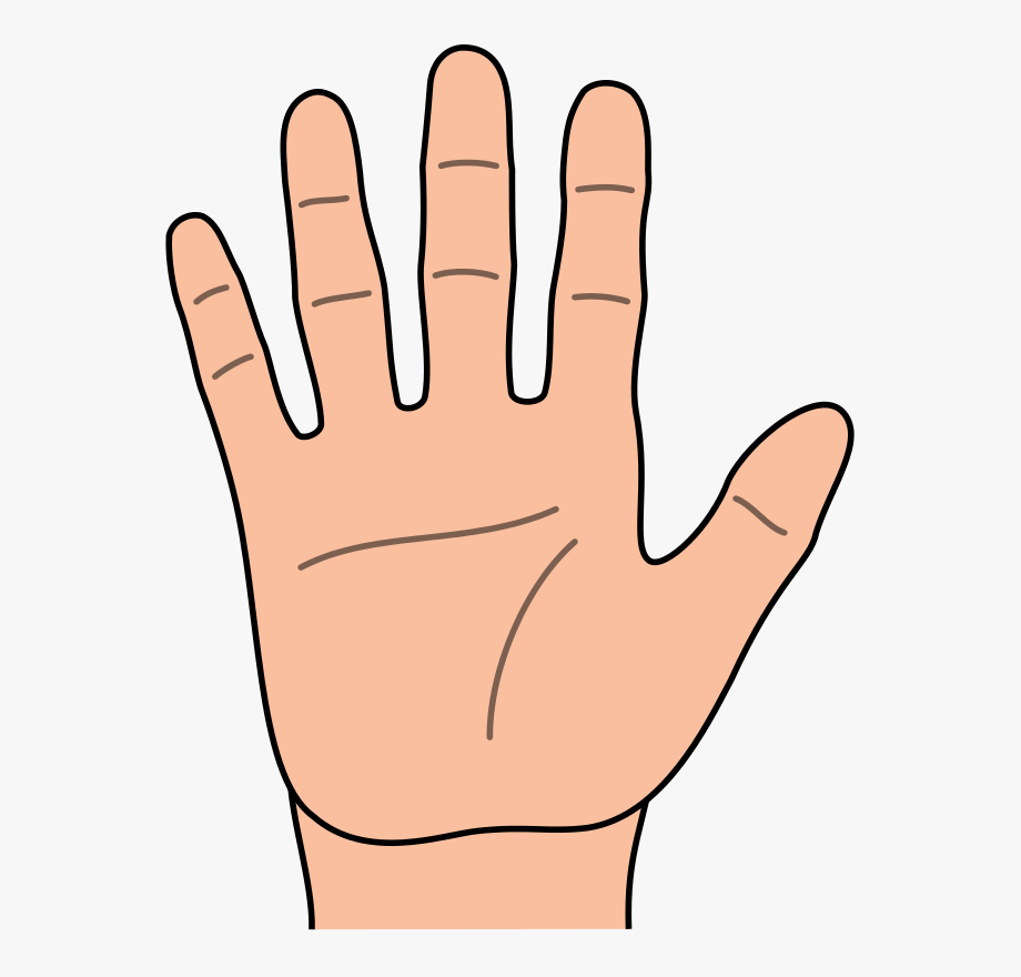 Of represent hand and. Fingers clipart single finger